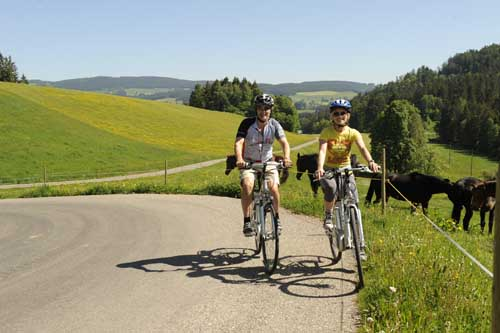 Elektro-Bike Fahrradtour im Hochschwarzwald
