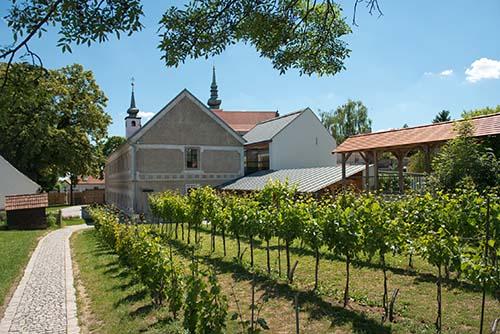 Wine Versum Poysdorf