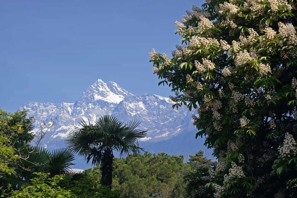 Südtirol, Alto Adige, Meran, Merano, Mai 2006