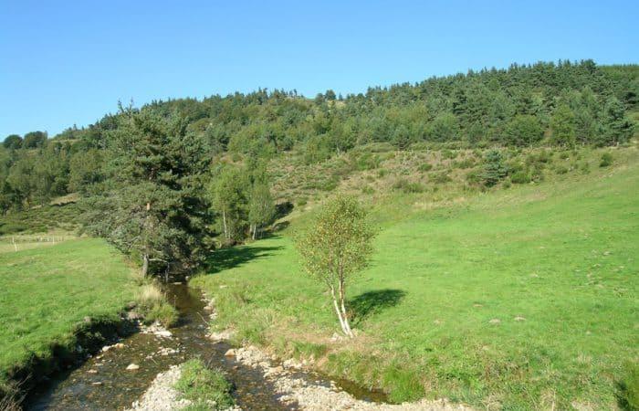 Stephenson Trail in France
